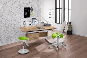 PAIDI study desk