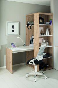 PAIDI shelves and desk