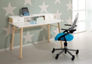 PAIDI desk